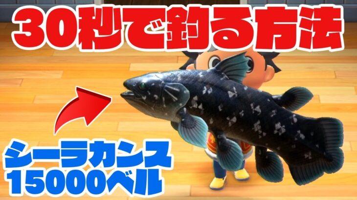 【あつ森】高級魚シーラカンスを最速30秒で誰でも簡単に乱獲しまくれる方法お教えします!【あつまれどうぶつの森】