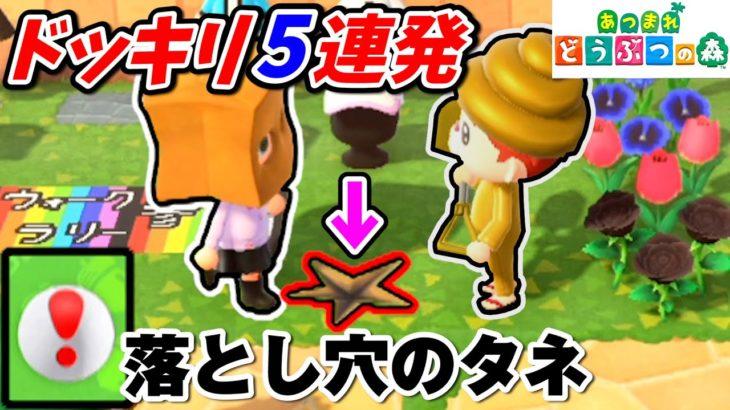 【あつ森】5連続!!落とし穴ドッキリ仕掛けたw【あつまれどうぶつの森:赤髪のとも】#6