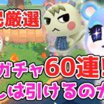 【あつ森】住民厳選 離島ガチャ!60連?でまさかの結果に…!!