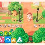 【あつ森】公園とお店周辺の紹介!【島クリエイター】