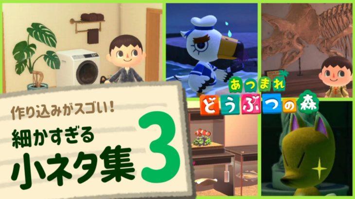 【あつ森】作り込みがスゴい!ゲームに隠れた細かすぎる小ネタ集3【あつまれ どうぶつの森】