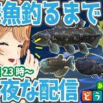 【あつ森しながら雑談】深海魚釣れるまで眠れません!【クレア先生】