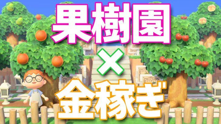 【あつ森】アプデ後の最強のお金稼ぎの方法!超大規模な果樹園を作ってみた【島クリエイター】