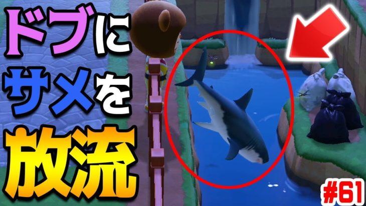 ドブ川にサメをポイッ。近づいた住民は死ぬ。 #61【あつまれどうぶつの森】