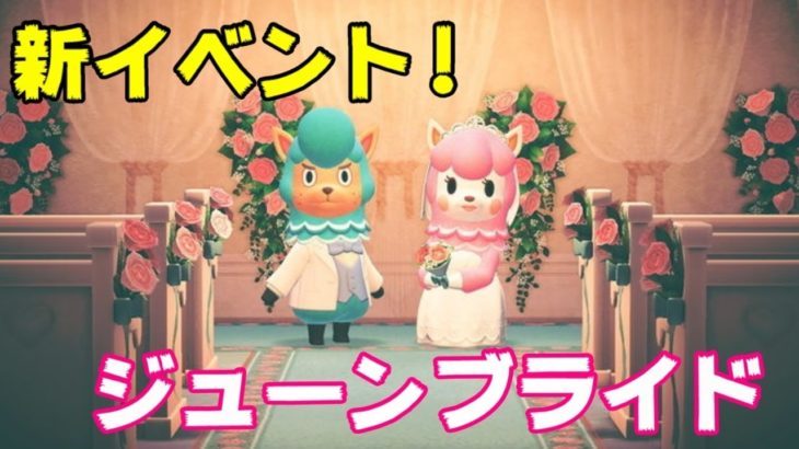 【あつ森】新イベント 結婚無縁の男がジューンブライド