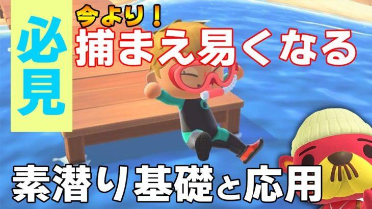 【あつ森】完全版:素潜りは早く泳ぐだけじゃダメ!このコツを掴めば、効率よく海の幸がGETできます!【あつまれ どうぶつの森】【ぽんすけ】