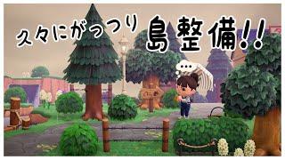 【あつ森】久々にがっつり島整備!タヌキ商店からの道を整備【あつまれどうぶつの森】【島クリエイター】【実況】