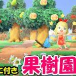 【あつ森】おしゃれで自然な果樹園の作り方!可愛いカフェと美術品の配置でこだわりの島作り【あつまれどうぶつの森 島紹介】