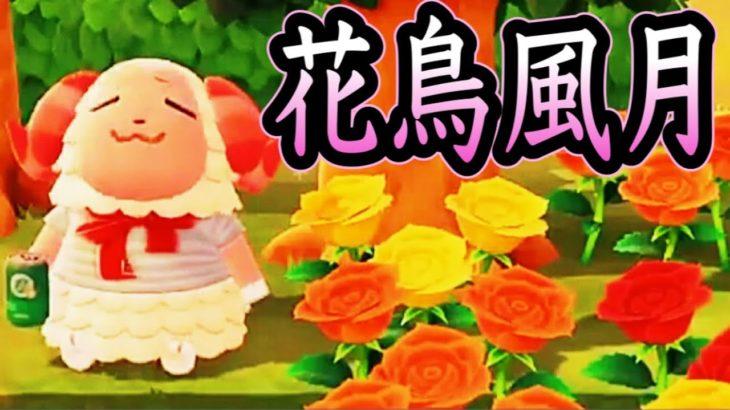 【あつ森】『人生は美しい』花を愛でるちゃちゃまるを実況する【あつまれどうぶつの森】【アナウンサー】【ゲーム実況】