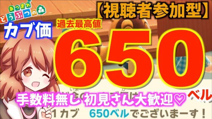 【あつ森参加型】カブ売値過去最高650ベルです!初見さん大歓迎!みみライブ配信 #166【女性実況】【あつまれどうぶつの森】