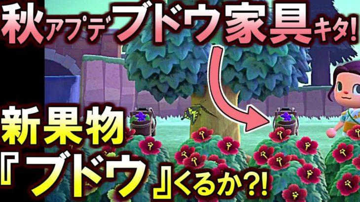 (あつ森)9月1日『新家具』情報解禁!ブドウの家具がきたぞ!新果物『ブドウ』追加の伏線か?!(あつまれどうぶつの森)