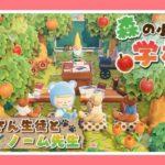 【あつ森レイアウト】森の小さなくまさんの学校…♪【あつまれどうぶつの森】【マイデザイン配布】【Animal Crossing】【女性実況者】【TAMAchan】