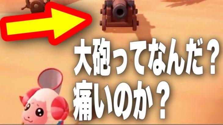 【あつ森】『蚊でもとまった?』大砲で撃たれるちゃちゃまるを実況する【あつまれどうぶつの森】【アナウンサー】【どう森】【ゲーム実況】