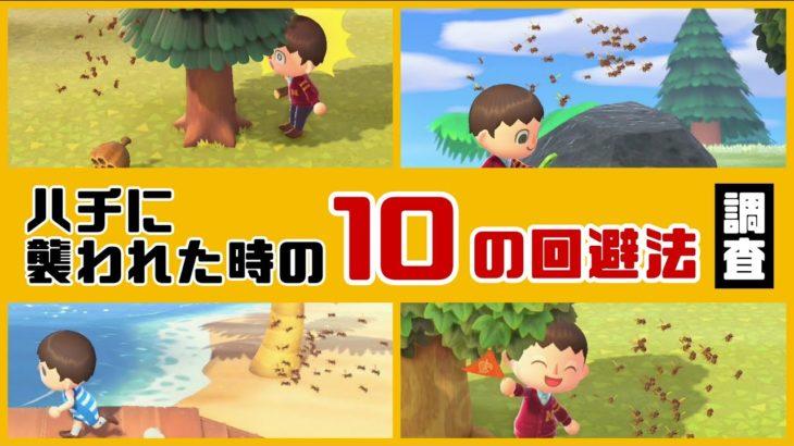 【あつ森】小ネタ検証!ハチに襲われた時の「10の回避法」を調査してみた集【あつまれ どうぶつの森】〈レウン GAME TV〉