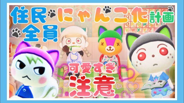 【あつ森生配信】可愛すぎて胃袋からキュンでぇぇぇえす💘💘💘【あつまれどうぶつの森】【Animal Crossing】【女性ゲーム実況者】【TAMAchan】