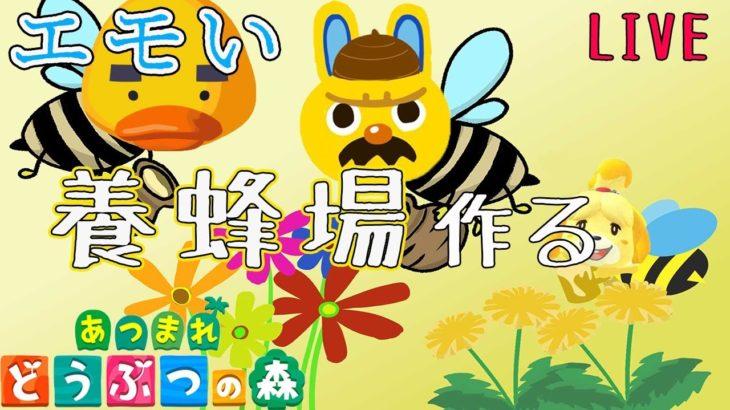 【あつ森 生放送】秋だからエモい養蜂場作る