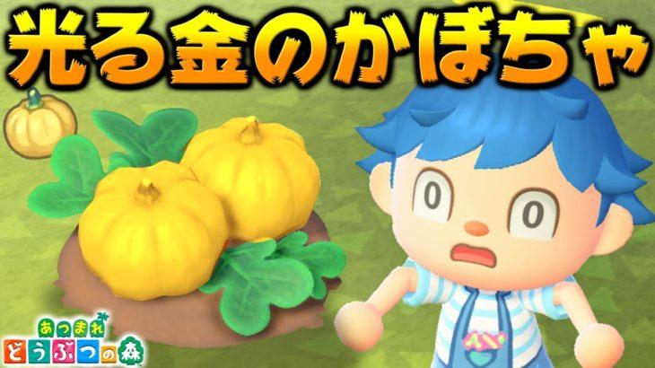 森 かぼちゃ あつ 【あつ森】緑のかぼちゃの効率的な入手方法と使い道【あつまれどうぶつの森】|ゲームエイト