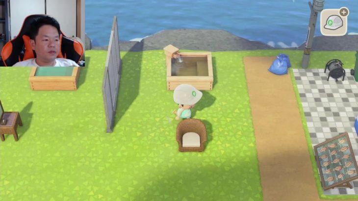 【あつ森】おひるのあつもり【ダイアン津田のゲーム実況】【あつまれどうぶつの森】