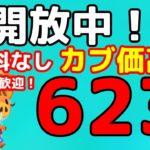 【あつ森】初見さん歓迎です 「623ベル」の島開放中!【カブ価】【あつ森 参加型】