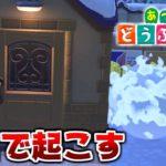 【あつ森】寝てる住民の家に雪玉ぶつけて起こさせてみた!!【あつまれどうぶつの森検証】