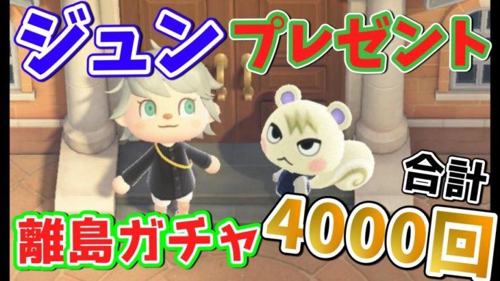 【あつ森】ジュンプレゼント→離島ガチャ 合計4000回【あつまれどうぶつの森】