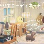 【あつ森】帰りたくなるお家に。ナチュラルなリビングレイアウト*【あつまれどうぶつの森/Animal Crossing】【実況/シュガートース島/くるみ/しゃちく/しゃちくるみ】