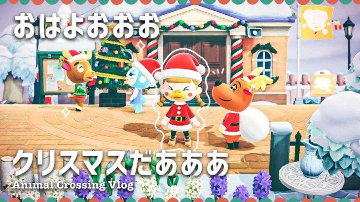 【あつ森】クリスマスだあああ【ライブ | あつまれどうぶつの森】