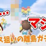 【あつ森】まさかあの子と再会するとは…チャス狙いの離島ガチャ!【あつまれどうぶつの森/Animal Crossing】【実況/シュガートース島/くるみ/しゃちく/しゃちくるみ】