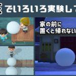 【あつ森】小ネタ検証!こんなことできる?「雪玉」でいろいろ実験してみた集3【あつまれ どうぶつの森】〈レウン GAME TV〉