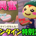 【あつ森】バレンタインデーイベントに感激!島の住民を全員紹介しながらチョコやブーケのお返しを配る【あつまれどうぶつの森 アップデート】
