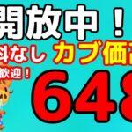 【あつ森】初見さん歓迎です 「648ベル」の島開放中!【カブ価】【あつ森 参加型】