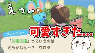 【あつ森】新しいニックネームが決定!!可愛すぎた…!【あつまれどうぶつの森/Animal Crossing】【実況/シュガートース島/くるみ/しゃちく/しゃちくるみ】