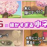 【あつ森】春がきた!桜 (さくら) の木に隠れた細かすぎる小ネタ集!【あつまれ どうぶつの森】〈レウン GAME TV〉