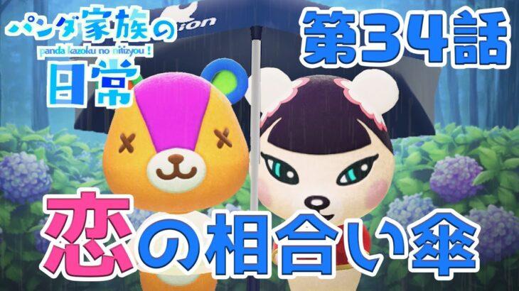 【あつ森アニメ】パンダ家族の日常#34「恋の相合い傘」