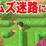 【あつ森#53】アプデで追加された巨大メーデー迷路から脱出できるのか?!【あつまれどうぶつの森】