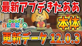 【あつ森】アプデでバージョン12.0.3の更新データが配信されたので最速で確認!アップデートが本体に入ったけど何か実感ある?【あつまれどうぶつの森/Animal Crossing】