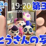 【あつ森アニメ】パンダ家族の日常#37「おとうさんの写真」