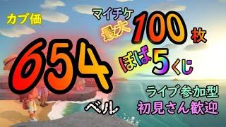【あつ森】カブ価 654ベル!!  初見さんも大歓迎‼ 往復あり!! 高騰 島無料開放中‼   参加型ライブ