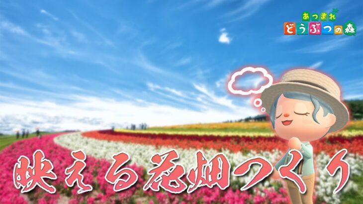 【あつ森】花を増やしたいからおしゃれな花畑を作って交配する!【雑談クリエイトライブ】