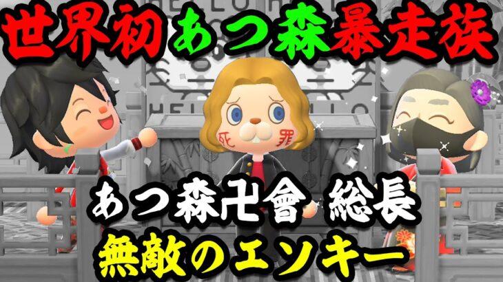 【東卍】俺、あつ森卍會の総長だけど知らない奴いねぇよなぁ!?【あつまれどうぶつの森】