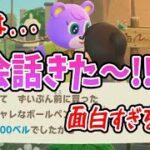 【あつ森】アプデで追加された新会話面白すぎるwwwwキャンディちゃんお金使いすぎwww【あつまれどうぶつの森/Animal Crossing】【実況/くるみ/しゃちく/しゃちくるみ】