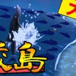 【あつ森】出現率0.5%の『サメ島』って知ってる?アプデで出現確率がさらに下がっているらしい!!【あつまれ どうぶつの森】【ぽんすけ】