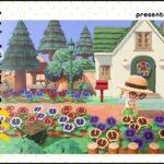 【あつ森】シンプルだけど映える🌼カラフルなパンジーの花壇で彩る自宅のお庭【島クリエイター】