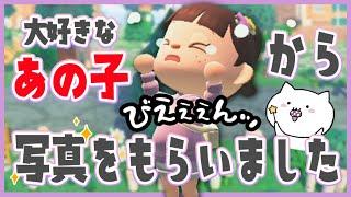 【あつ森】大好きなあの子から写真をもらい、涙する女【あつまれどうぶつの森/Animal Crossing】【実況/攻略/くるみ】