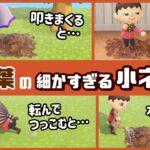 【あつ森】秋のアイテム「落ち葉」に隠れた細かすぎる小ネタ集!【あつまれ どうぶつの森】@レウンGameTV