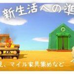 【あつ森生配信】新生活準備編~島の下見、マイル家具集めなど~