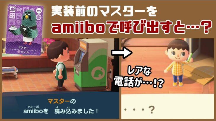 【あつ森】小ネタ検証!実装前のマスターをamiiboで呼び出すと…?タヌポート&パニーの島で実験!【あつまれ どうぶつの森】@レウンGameTV