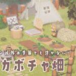 【あつ森】ハロウィンの季節以外でも浮かない♩白いカボチャ畑を作る🤍【あつまれどうぶつの森】【実況/攻略/くるみ】